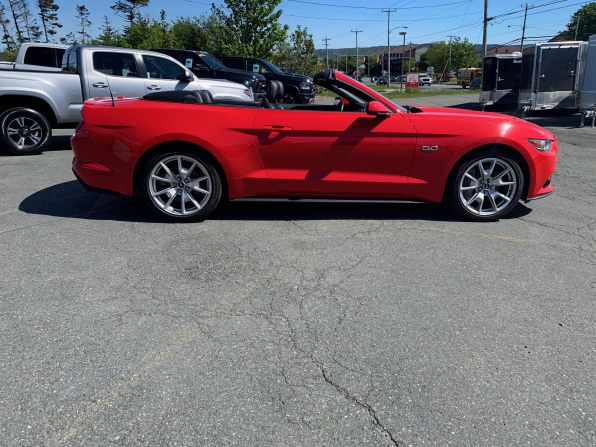 2015 FORD MUSTANG GT PREMIUM CONVERTIBLE MANUAL 5.0 Photo 8